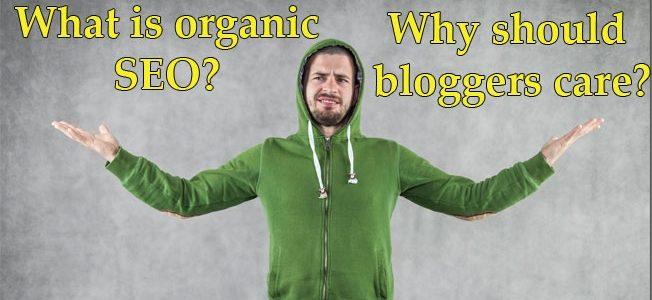 organic traffic seo